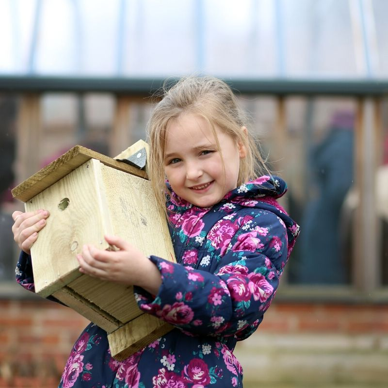 Make your own nesting box at the museum