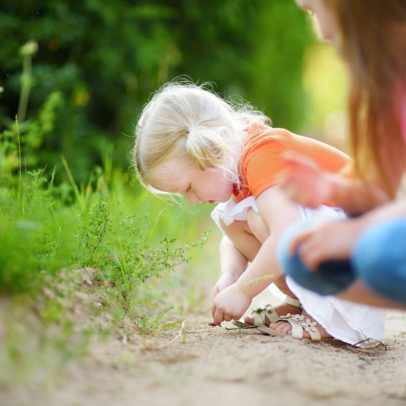 An image of a young child bug hunting